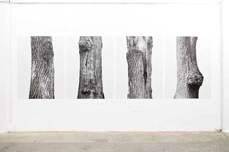 «We-ll-timed» group exhibition, Month of Photography in Minsk, CECH Gallery, Minsk, Republic of Belarus - October 2014